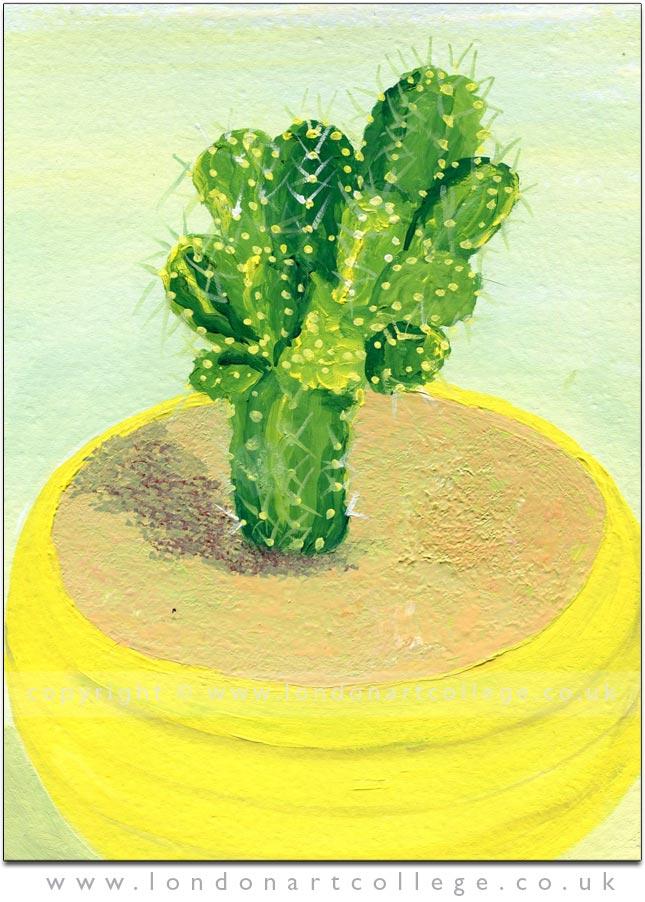 Cathryn-Sloane-41602-colour-awareness