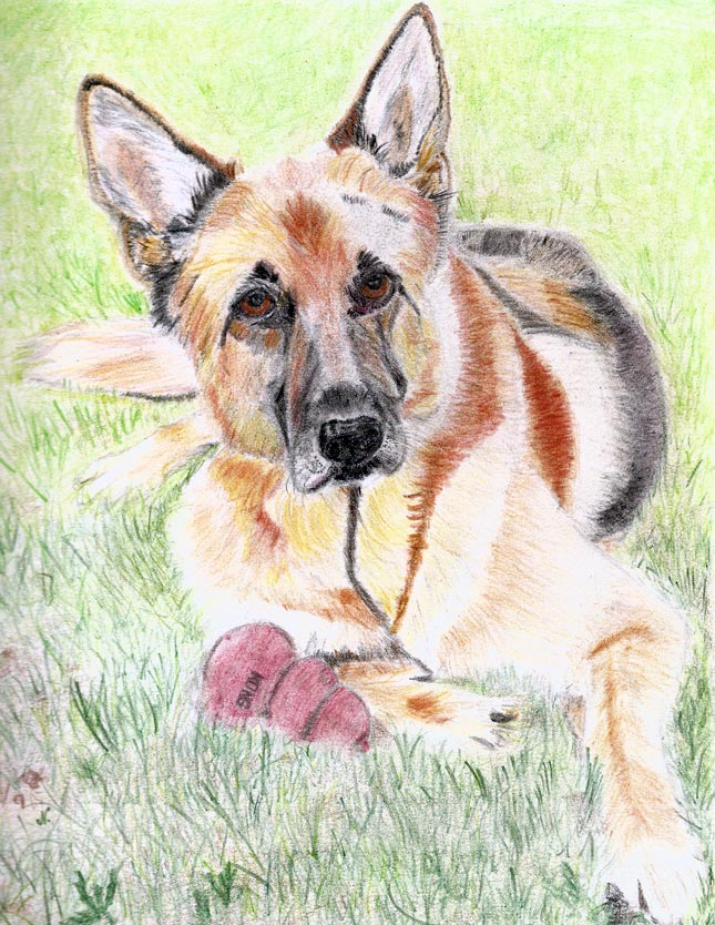 pet portraits online art course
