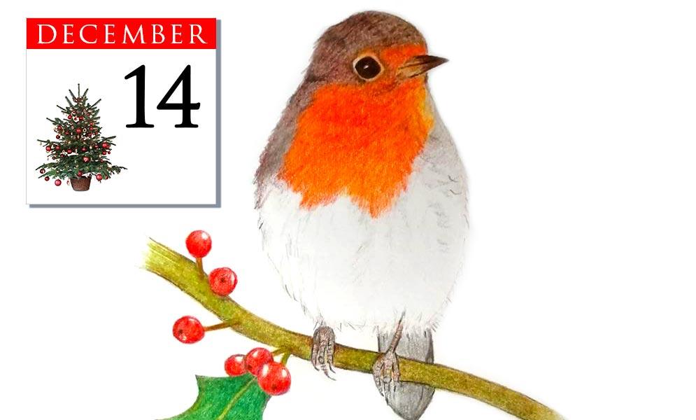 Advent Calendar December 14th