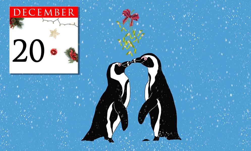 Advent Calendar December 20th