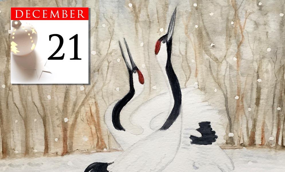 Advent Calendar December 21st