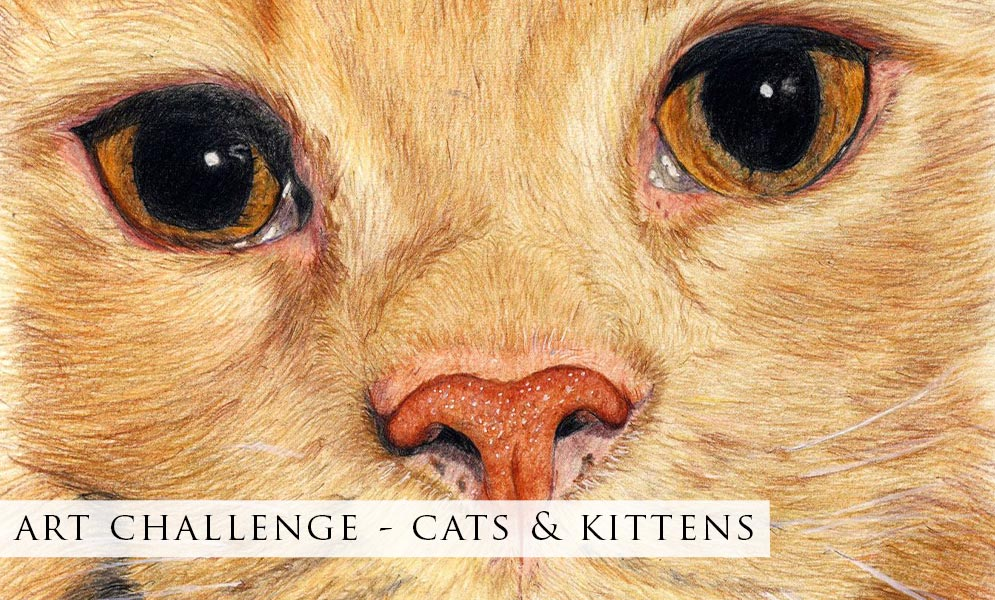 Weekend Challenge Artwork – Cats & Kittens!