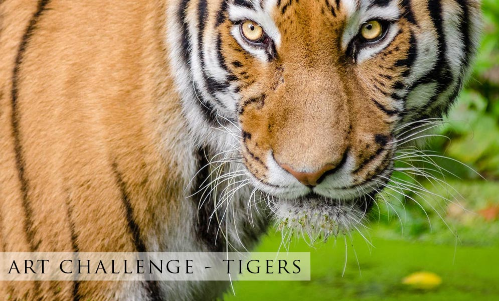 Weekend Art Challenge – Tigers