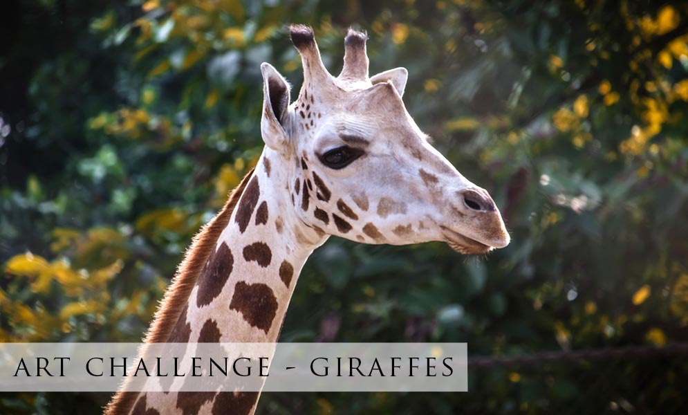 Weekend Art Challenge – Giraffes