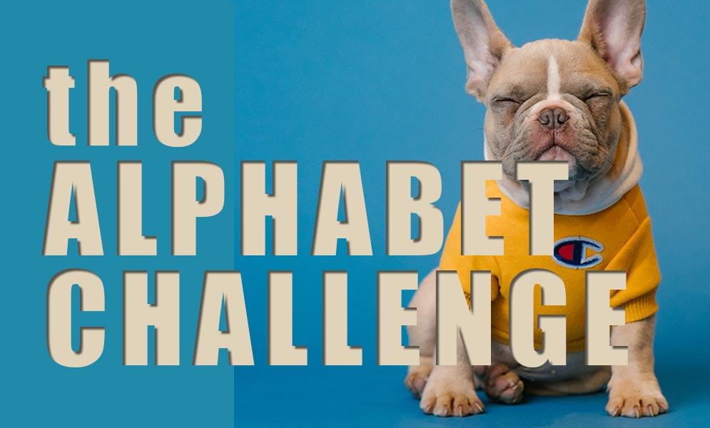 Weekend Challenge – Alphabet Challenge D