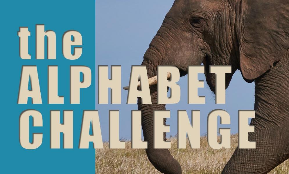 Weekend Challenge – Alphabet Challenge E