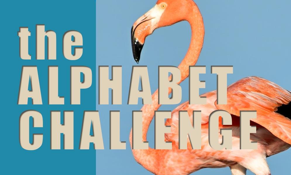Weekend Challenge – Alphabet Challenge F
