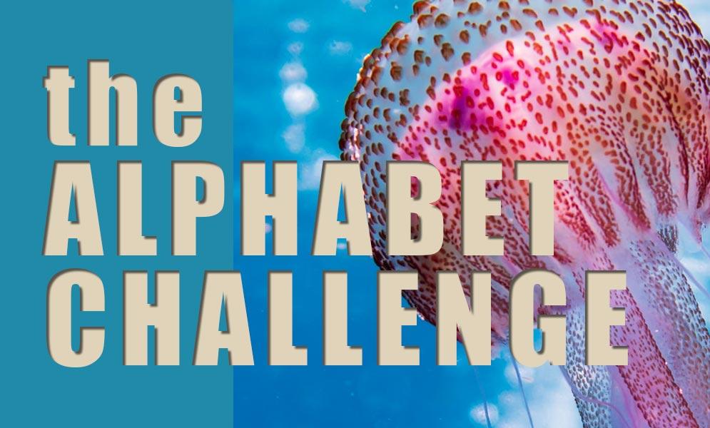 Weekend Art Challenge – Alphabet Challenge J
