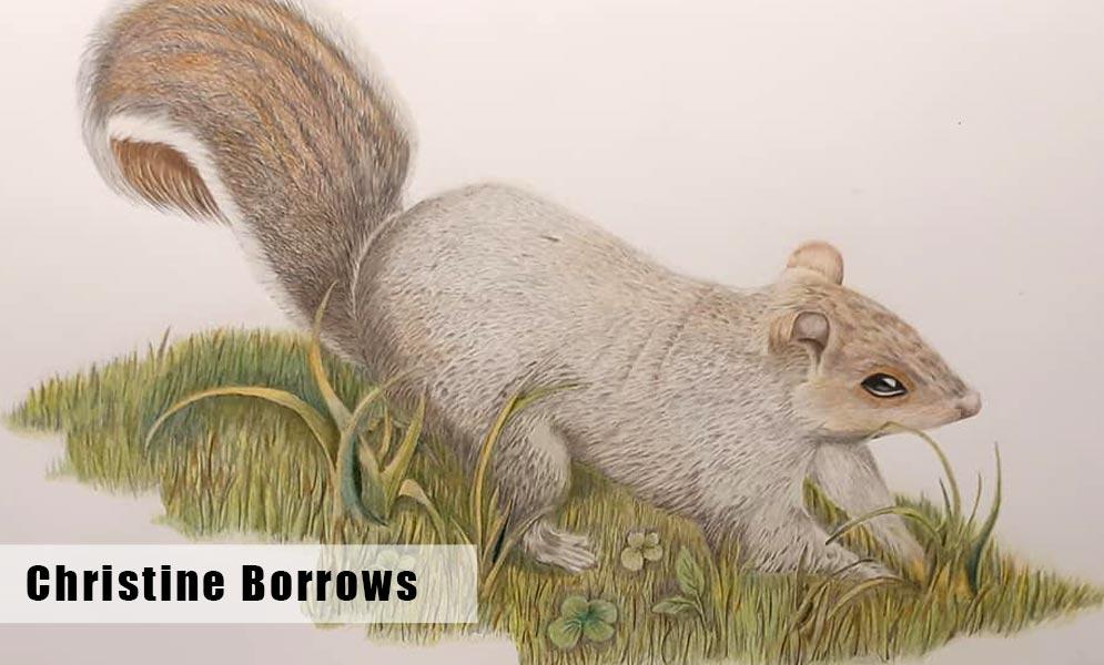 Christine Borrows