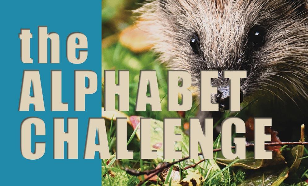 Weekend Challenge – Alphabet Challenge H
